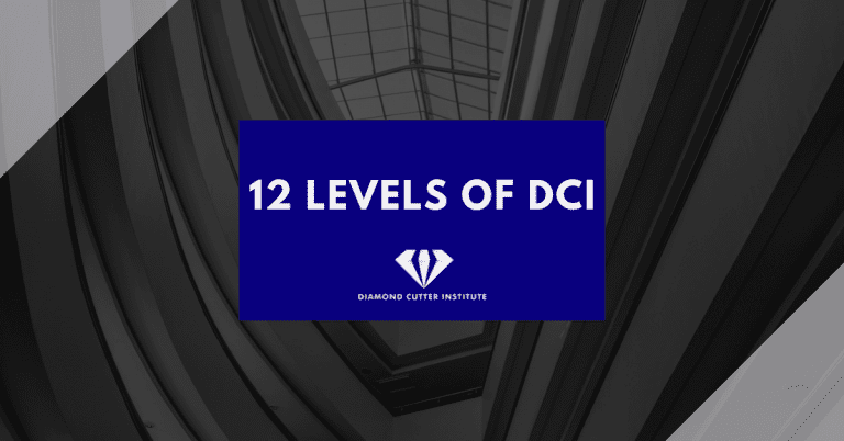 The 12 levels of DCI
