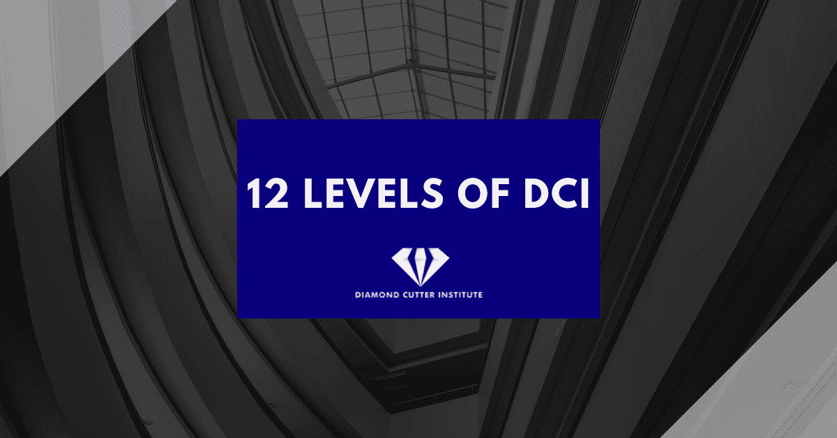 Diamond Cutter Institute's 12 levels